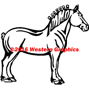 116-draft-horse