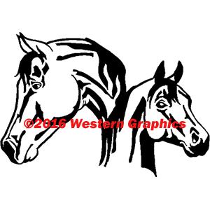 140-arabian-mare-and-foal