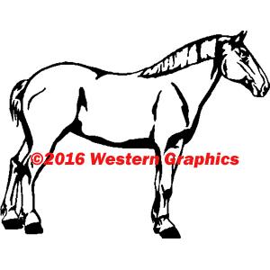 152-draft-horse