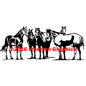 165-5horses