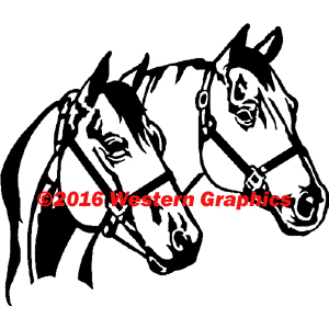 181-2-horses