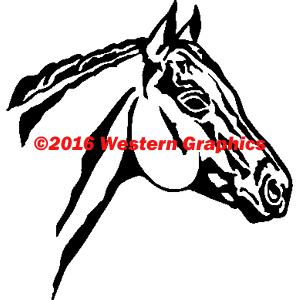 208-horse-head