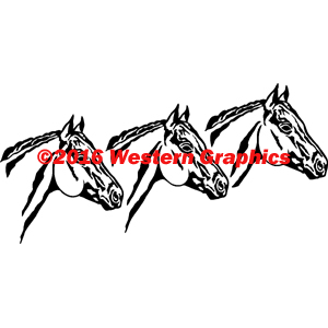 209-3-horse-heads