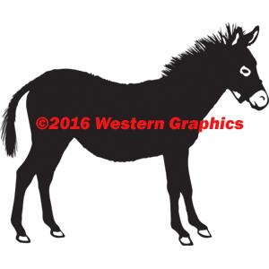 250-donkey