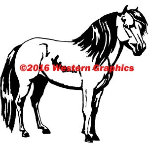 251-miniature-horse