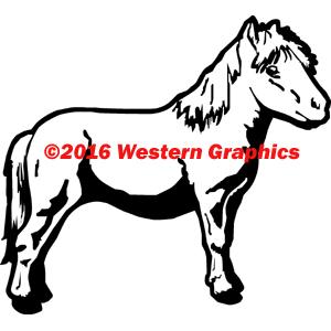 252-miniature-pony
