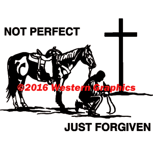 3010-not-perfect-cowboy
