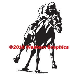 673-race-horse